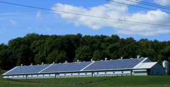 The Best Renewable Energy Sources for Homes — Ranked!