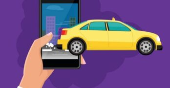 Reasons Why Pet Cab Services are a Good Idea